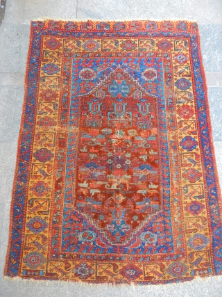 Antique Anatolian Carpet