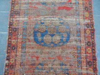 Antique Kotan Carpet