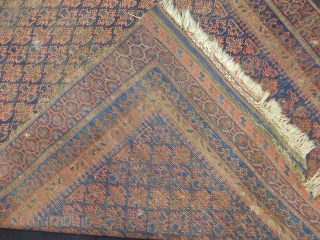 Old Baluch Prayer Carpet