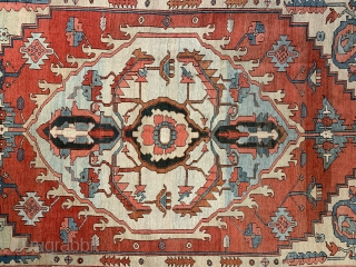 Beautiful antique Serapi carpet 356 x 271 cm Good condition