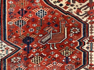 Lovely antique khamseh pomegranate carpet with large chickens dated 1876 (1293) All wool natural dyes slightly low at end borders and few spots old repair but generally  good condition clean and floor  ...
