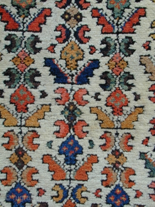 "unusual Kurdish small carpet last Qtr 19C probably Kolyai size 8 ft 9"" by 4 ft 3"".  All wool and natural dyes original selvedges and kelim ends. Few small good quality  ..."