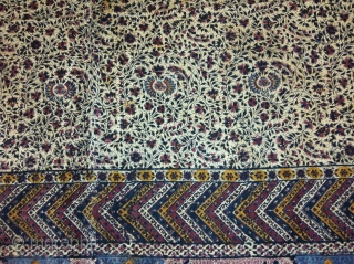 Antique 19th Century Kalamkari, Beautiful Print Perfect Condition..Size 179x352 Cm..Approx....(IMG_00026082)