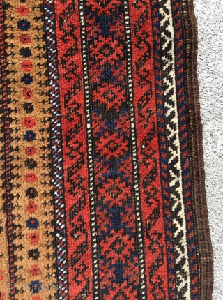 Camel ground Baluch prayer rug.