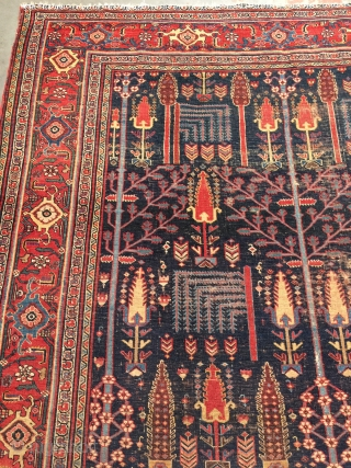 Antique Halvai Bidjar rug with superb dyes and good age. Late 19th century. Size: 5'3 x 7'2. Very fine weave and thin handle. All wool. Worn but remarkably beautiful nonetheless. Please contact  ...