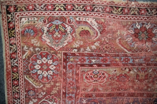 Transsylvanic Basra Ghiordes antique, Turkey 1800, wool on wool , vegetable Colours, size: 1,54 x 1,11 m