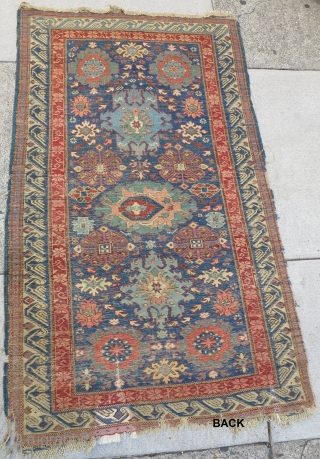 Kuba pile rug with a harshang palmette design more typically seen in sumak rugs. Great color and design.