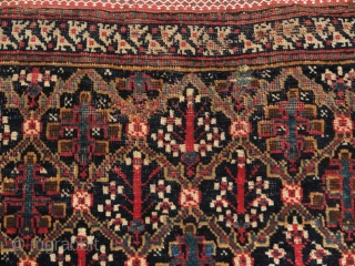South Persian Bagface, super soft lustrous wool with a great handle. Shrubs in lattice design based on classic Garden Carpet design. The double bird border is probably an indication of Afshar work  ...