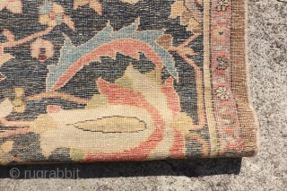 Antique Sultanabad, rare end of 19 Century color combination with a camel hair ending, 99cm x 198cm or 3'2 x 6'4cm , has been reduced in length. lovely patina and powerful design.