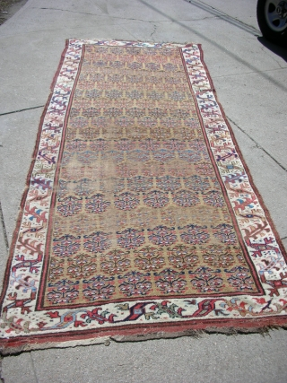 "Kurdish long rug 4'-1""x10'-0"" great wool and natural dyes. Low areas, areas of repiling."