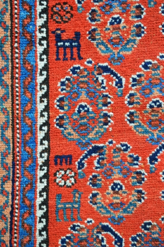 Small Afshar carpet in good overall condition with natural colours throughout.