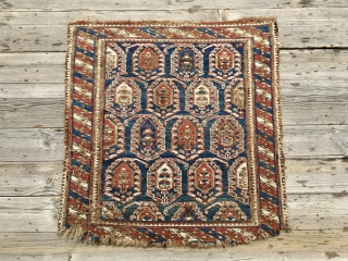 Lovely Caucasian, probably Shirwan, sumack bag face. Cm 46x48. Mid 19th c. Damaged, worn out, but beautiful, rare, with great pattern and fantastic dyes. Affordable.