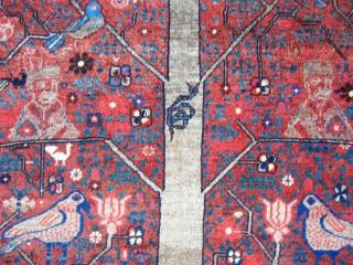 Avshar or Shiraz rug 1,92*3,00 good condition
