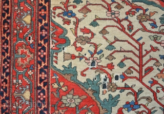 A very fine antique Malayer rug with nice drawing. Filthy, losses to ends and sides, some small holes, slight red run on back in places, but in good pile so perfect for  ...