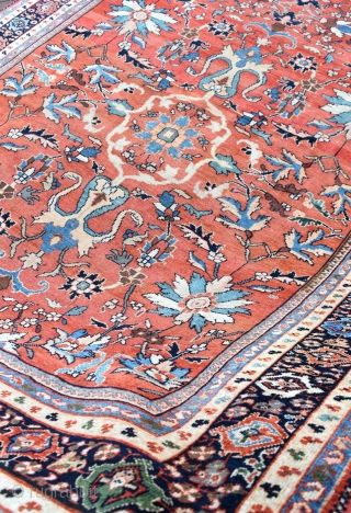 A very fine antique Mahal carpet, tightly knotted large scale all over design on soft Terracotta ground framed by attractive navy borders. A very pretty piece , even low pile for the  ...