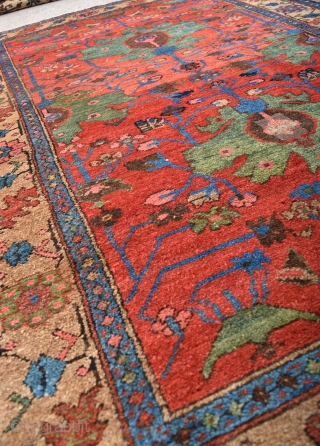 An antique Kolyai Kurd rug with exception dyes, beautiful green palmetes on a vivid red ground surrounded by rare yellow borders. A beautiful rug in very good shape just one small old  ...