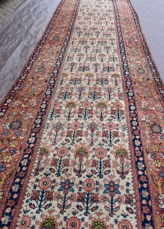 An large early North West Persian runner of large size on coveted ivory ground.  Delightful design with beautiful colours.  Reduced in length across one border, a few patched from the missing piece  ...