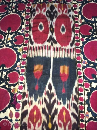 19th cent Uzbek Ura tube region Suzani. It has superb stitches, and veg dyes colours. Excellent adras ikat in the middle, and excellent colours Russian block print back of suzani.