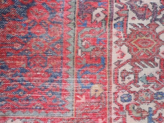 Persian Malayer Kelleh, 9-0 x 18-4 (2.74 x 5.59), early 20th century, rug was washed, no rot, no hard places, original edges, slight end loss, 2 faded areas, 2 slits, 2 stains,  ...