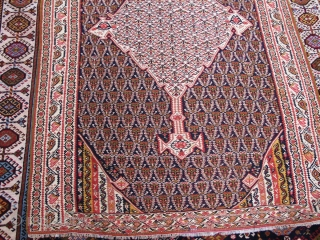 Fine quality antique pure wool Seneh kilim   210x123cm  P.O.R