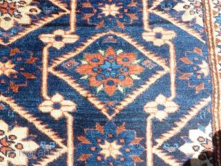Antique Shirwan 203x146cm,a beautiful piece, in a good condition