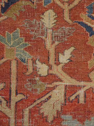 7'10''x12'3'' Serapi rug circa 1890s 