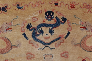 Stunning antique yellow ground nine dragon banner rug from Ningxia. Very good condition for age. Lovely colours and soft wool. ca. 1900. circa 222x235 cm.