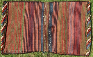 Bahktiari/Luri double Khorjinn, saddlebag, almost six ( 6 ) pounds of lush thick wool, and a mesmerizing green. Wool on wool, cleaned, no stains, moth, etc. All closing elements intact. Natural colors.1900  ...
