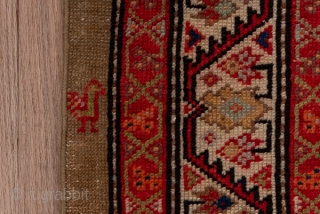 Hamadan Runner