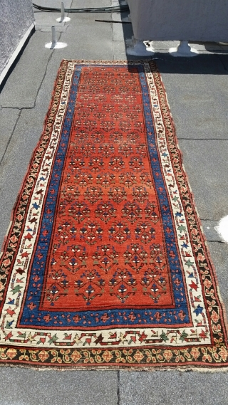 """Kurdish/Caucasian Runner, circa 1870-1880, 4' x 12'-4"""", Swastika Border, fantastic colors, minor oxidation to the brown needs attention, washed and ready for use."""