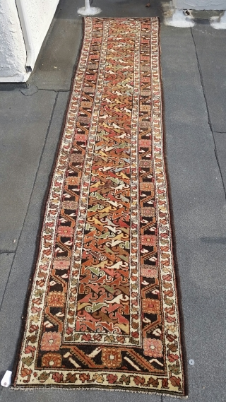 Kurdish runner, circa 1900, rare design, fabulous range of colors, lustrous wool, measuring approximately 3 feet by 14 feet.  Usually, this design is seen in bags and rugs from Veramin.  I have  ...