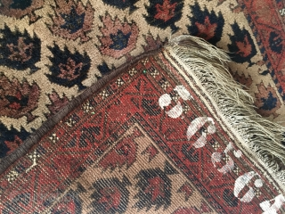 Antique ivoryground Baluch with rare design. 111 x 75 cm.  Full pile condition, needs a wash. Sides newly overcast, Kelimends intact