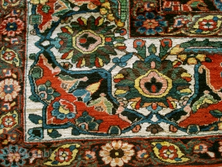 Antique Bachtiari. Huge chunck of what must have been an enourmous carpet. To my opinion a descendant of the famous Von Hirsch garden carpet (also only fragments survived). see HALI 42 PAGE  ...