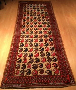 Central Asian Uzbek Botteh Rug Full Condition Good Colors Size 310 x 122 cm