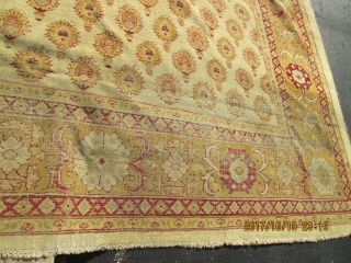 Antique Agra.  size 11'4''x14'.  circa 1880'  condition low even pile .and some worn and need some repair'.