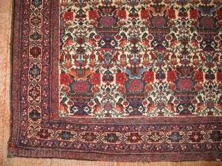 2857-Afshar carpet 150x108