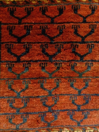 Turkmen Ensi