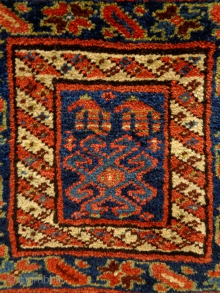 Kurd Bagface