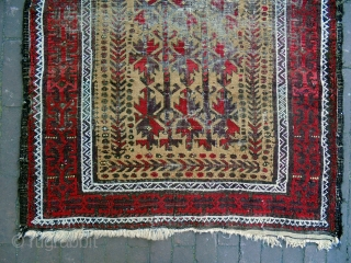 Baluch Size: 98x180cm Natural colors, universal design, camel hair, Turkish knot.
