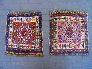 Twin Luri Bagfaces