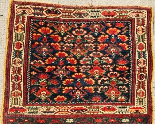 Kurdish bagface,circa 1880 wool on wool,original borders•••size 86x70cm