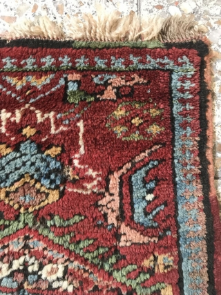 Nw persia woolen Vaghireh(sampler),Size:27x39 cm