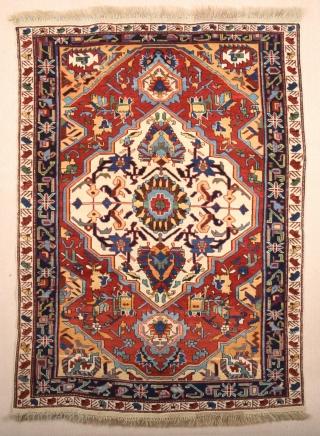 Shirvan Rug circa 1900 size 123x173 cm in excellent condition