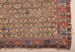 Late 19th Century Shirvan Prayer Rug size 112x135 cm