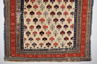 Late 19th Century Shirvan Rug size 100x136 cm