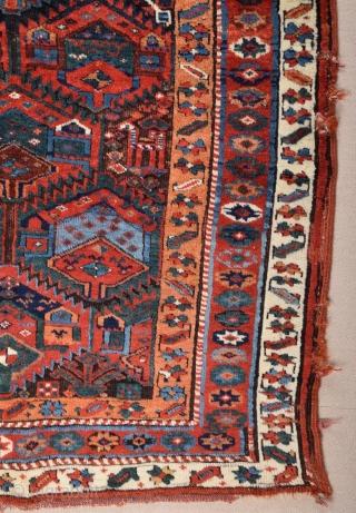 Mid 19th Century Sauj Bulack Rug size 127x201 cm
