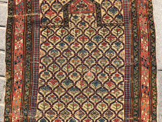 Mid 19th Century Shirvan Prayer Rug size 100x132 cm