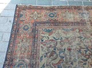 19th Century Ivory Ground Persian Mahal Carpet size 275x310 cm Just a small patch on the middle otherwise no repiling or restoration, original size