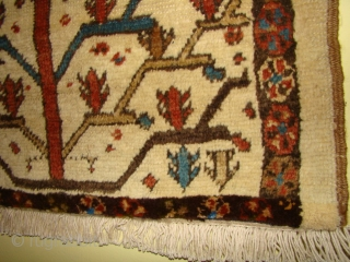 NW Persian Bakhshayesh small rug. Rewoven bottom border, no re-pile or other repairs. Size: 30X48 inches, 76X122 cm