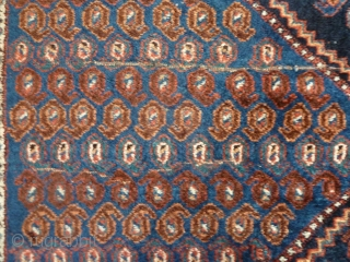 A striking Afshar Shahr Babak rug, circa 1900 with soft wool and excellent colours. In very good condition, just minor wear. 195 x 150cm.